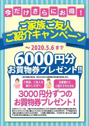 2020ご紹介キャンペーン300