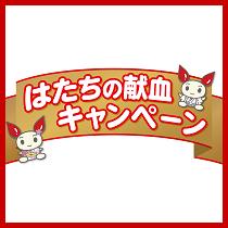 smark_kenketsu_210