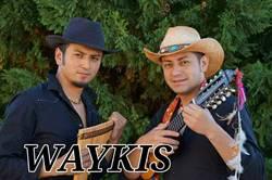 waykis_210